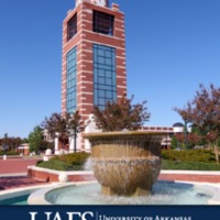 Draft 2019-20 Undergraduate Catalog.pdf