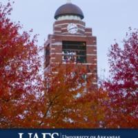 2020-21 Undergraduate Catalog.pdf